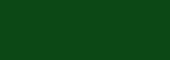 Pünter-Blumen Stäfa
